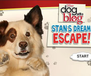 Dog With a Blog: Stan Escapes